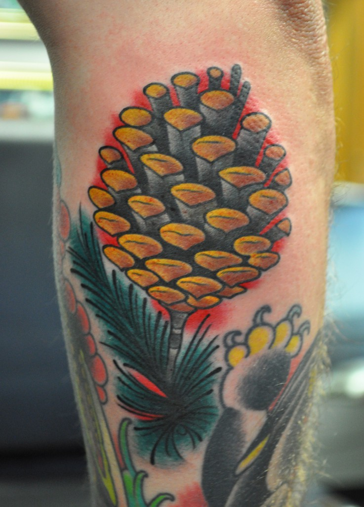 tattoo of pine cone, on a forearm, in color, by josh hoffman